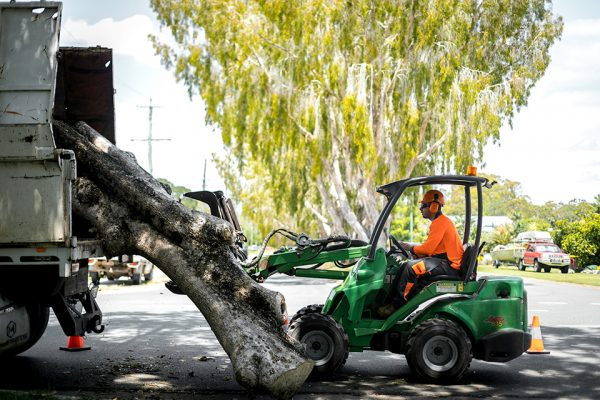 Independent-Tree-Services_2017_95